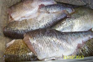 Kyselé rybičky